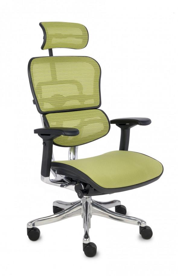 Grospol Fotel biurowy Ergohuman Plus Elite BT zielony (KMD34) --- OFICJALNY SKLEP Grospol