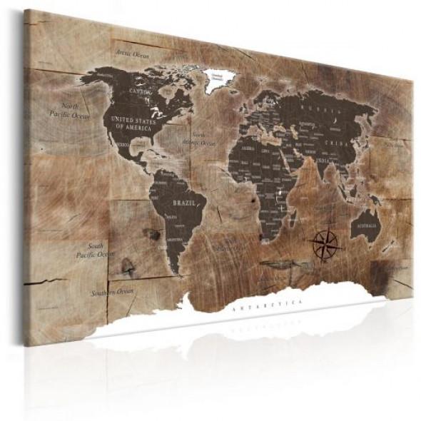 Obraz - Mapa świata: Drewniana mozaika