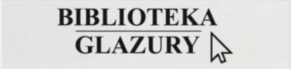 Płytki cegiełki EQUIPE EVOLUTION BLANCO BRILLO 10X40