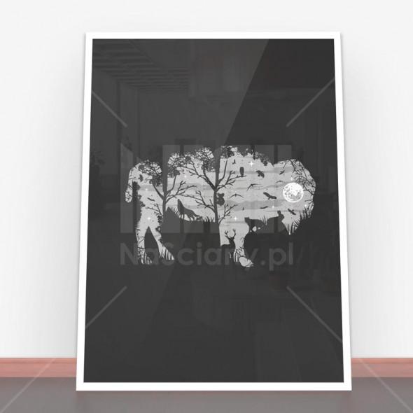 Plakat Wild Bison